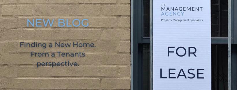 Renting Blog Banner